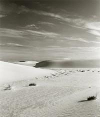 Lynn Stern, Extended Landscape, 1981