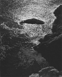 Tide Pool, Point Lobos 1945