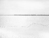 Train Crossing Desert Near Kelso, California, 1974