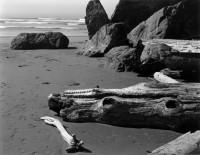 Edward Weston, Moonstone Beach, 1937