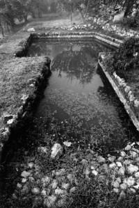 James Nicholls, Siena Stone Pond