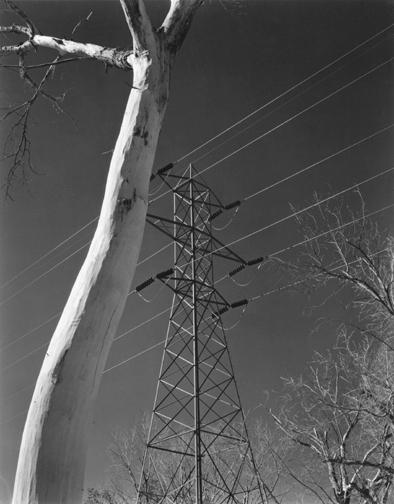 Edward Weston - Owens Valley, 1937