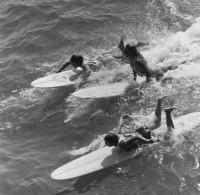 Ron Church, Three Female Surf Contestants, Huntington Beach, California, 1963