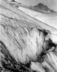 Imogen Cunningham, On the Slope, Mount Rainer, 1915