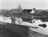 Little River, North Coast 1937