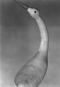 Swan Gourd 1924