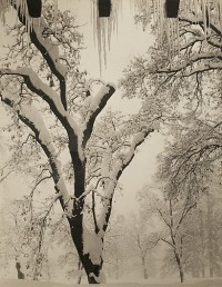 Ansel Adams, Icicles, Ahwahnee Hotel, Yosemite National Park, California, circa 1934