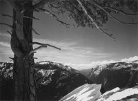 Ansel Adams, On The Heights, Yosemite Valley, California, 1927