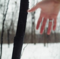 Peter Haakon Thompson, Untitled, (My Hand in the Woods, Plymouth, MN, December, 1992)