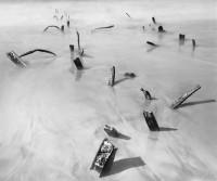 Wynn Bullock, Sunken Wreck, 1968