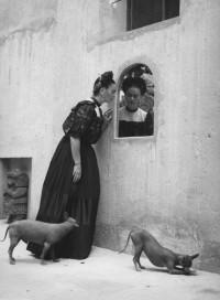 Lola Alvarez Bravo, Frida Kahlo, No.1, 1950