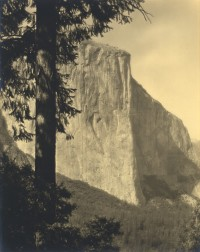 John Paul Edwards, Untitled, Yosemite, circa 1920