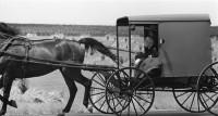 George Tice, Amish Father And Daughter In Buggy, Lancaster, PA, 1965