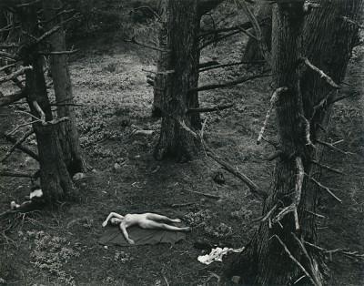 Wynn Bullock, Woman and Dog in Forest, 1953