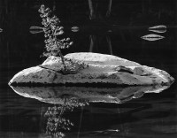 Brett Weston, Pond, High Sierra, 1971