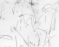 Don Ross, Grasses in Snow, 1948