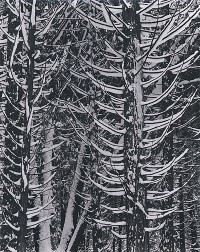 Ansel Adams, Forest Detail, Winter, Yosemite National Park, 1942