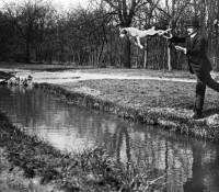 Jacques Henri-Lartigue - Bois de Boulogne, Monsieur Folletete, Le Secretaire de Papa avec son chien, Tupy, Paris, 1912