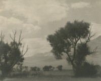William E. Dassonville, Untitled, California Valley, circa 1925