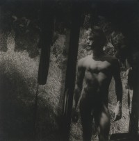 Untitled, Male Nude Through Tattered Screen, Circa 1960