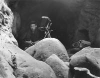 Paul Caponigro, Point Lobos, August 12th 1956