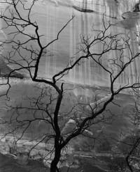 Glen Canyon, 1959-60