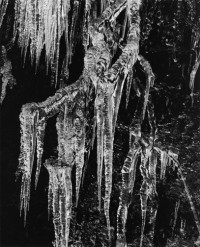 Icicles, 1975