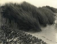 Oceano, California, 1933