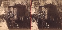 Carleton Watkins, Dead Giant, Tuolumne Grove, Big Oak Flat Route To Yo Semite