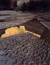 Escalante River, 1980