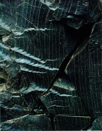 Fractured Obsidian, Landmannalaugar, 1972