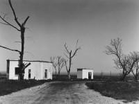Untitled Landscape, 1946