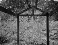 Chadwick Garden, 2005