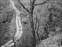 White Road, 2006