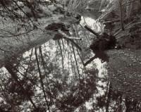 Scott Creek 60, 1986