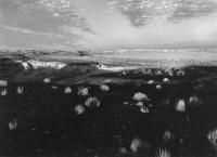 Petrified, Forest, Arizona, 1976
