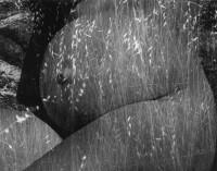 Harvest, 1953