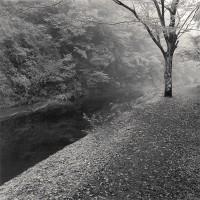 Yoro Valley, Study 1, Chiba, Japan 2008