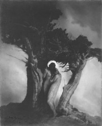 Anne Brigman _ The Heart of the Storm, 1906