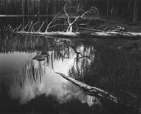Ansel Adams – Siesta Lake, Yosemite National Park, California, 1958