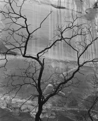 Brett Weston – Glen Canyon, 1960