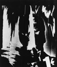 Brett Weston – Torn Poster