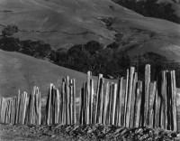 Edward Weston – Fence, Old Road, Big Sur 1935