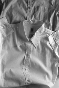 Lawrie Brown, Shirts #2, 2004