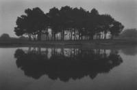 Paul Kozal - The Sea Ranch Links 1999