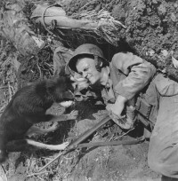 W. Eugene Smith – Dog With Marine in Foxhole, Saipan, circa. 1944