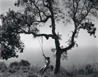 Edward Weston, Winter Idyll, 1945