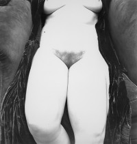 Irving Penn, Nude 119 New York, 1949-1950