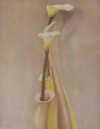 Sheila Metzner, Saxophone Vase Valla, 1985