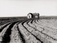Dorothea Lange, Tractored Out, Childress County, Texas, 1938